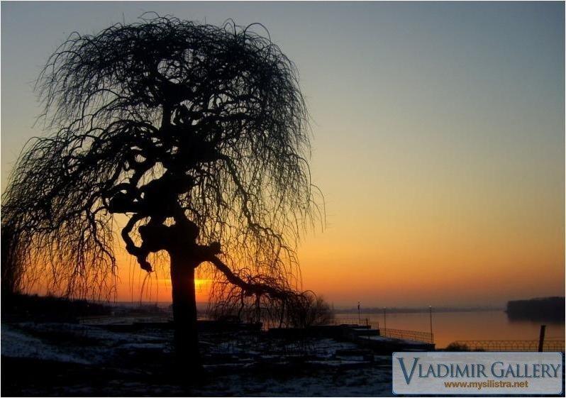 Зимен ден край Дунав